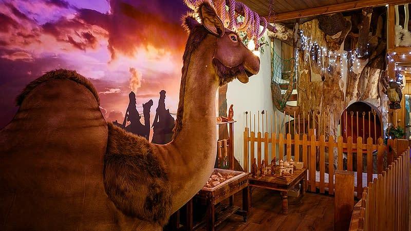 Life size camel